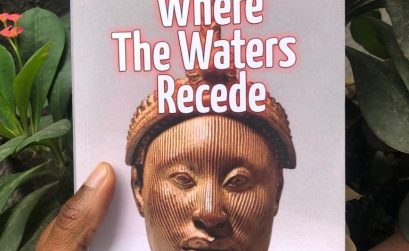 Where the water recedes Something Bookish Review (3)